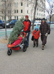 Bringing The Tree Home on Prospect Park