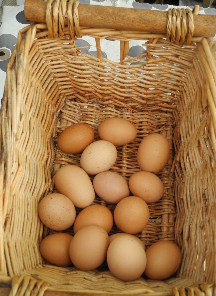 Market Eggs from County Cork